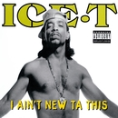 I Ain't New Ta This/Ice t