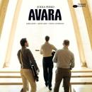 Avara/Jukka Perko