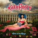 One Of The Boys/Katy Perry