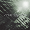What Are You Waiting For?/Lauri