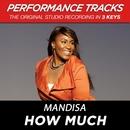 How Much (Performance Tracks) - EP/Mandisa