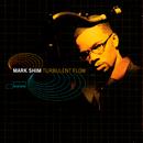 Turbulent Flow/Mark Shim