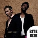 Bite Size Massive Attack/Massive Attack