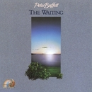 The Waiting/Peter Buffett
