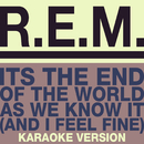 The End Of The World (Karaoke Version)/R.E.M.