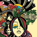 Winning Days/The Vines
