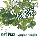 Get Free (Karaoke Version)/The Vines