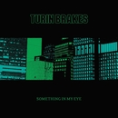 Something In My Eye/Turin Brakes