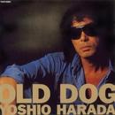 OLD DOG/原田芳雄