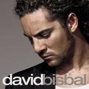 ダビッド・ビスバル~太陽の季節/David Bisbal