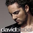 DAVID BISBAL/DABID B/David Bisbal