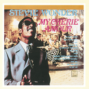 MY CHERIE AMOUR/Stevie Wonder