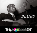 Triple Best Of Blues/Multi Interprètes