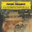 Puccini: Turandot - Highlights/Katia Ricciarelli, Plácido Domingo, Barbara Hendricks, Ruggero Raimondi, Wiener Philharmoniker, Herbert von Karajan