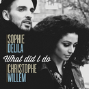 What Did I Do/Sophie Delila, Christophe Willem
