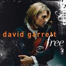 フリー/David Garrett