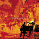 DAVID BENOIT/FUZZY L/David Benoit