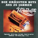 Die Grössten Hits Aus 25 Jahren/Wolfgang Ambros