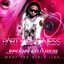 What The Girls Like & JAYKAY FEAT FLO RIDA,SMOKEY AND GIT FRESH/Party Madness