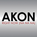 Right Now (Na Na Na)/Akon