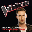 Team Adam – The Blind Auditions (The Voice Performances)/Various Artists