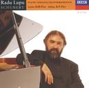 シューベルト:ピアノ・ソナタ 第13番・第21番/Radu Lupu