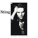 ナッシング・ライク・ザ・サン/Sting, The Police