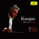 カラヤン 音楽が脳を育てる/Herbert Von Karajan