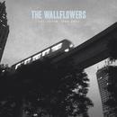 THE WALLFLOWERS/GREA/The Wallflowers