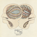 Leave It (EP)/Bombay Bicycle Club