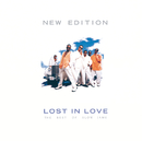 Lost In Love: The Best Of Slow Jams/New Edition