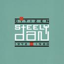 シチズン/Steely Dan