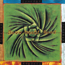 SYNERGY       /THE D/Dave Weckl Band