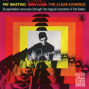 Baiyina (The Clear Evidence)/Pat Martino