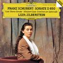 Schubert/Liszt: Gretchen Am Spinnrade D.118 / Liszt: Dante Sonata From Années de pèlerinage / Schubert: Piano Sonata In D Major D.850/Lilya Zilberstein