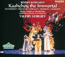 リムスキー=コルサコフ:歌劇「不死身のカスチェイ」/Konstantin Pluzhnikov, Marina Shaguch, Larissa Diadkova, Chorus of the Kirov Opera, St. Petersburg, Orchestra of the Kirov Opera, St. Petersburg, Valery Gergiev