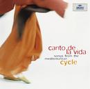 人生の歌/地中海より/Cycle
