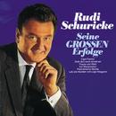 Seine Grossen Erfolge - Rudi Schuricke/Rudi Schuricke, Werner Müller