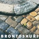 Na kameni kamen/Brontosauri
