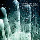 Sometimes It Rains/David Charvet