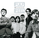 The John Peel Sessions (BBC Version)/Pulp