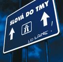 Slova do tmy (Tour Edition)/No Name