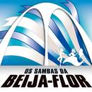 Os Sambas Da Beija Flor De Nilópolis/G.R.E.S. Beija Flor De Nilópolis