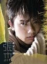 Zai Ai Wo Yi Hui/Jie Zhang