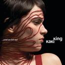 ... Until We Felt Red/Kaki King