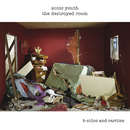 The Destroyed Room/Sonic Youth
