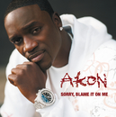 Sorry, Blame It On Me (Int'l ECD)/Akon