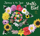 Blossoms In The Street (E-Radio Edit)/Wallis Bird