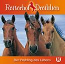 03: Der Frühling des Lebens/Reiterhof Dreililien