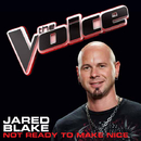 Not Ready To Make Nice (The Voice Performance)/Jared Blake
